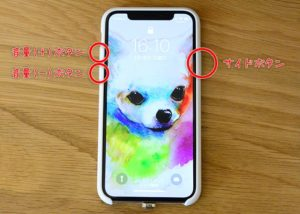 iphonex-reset06