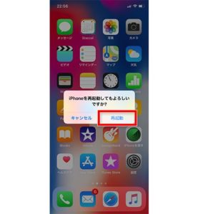 iphonex-reset10
