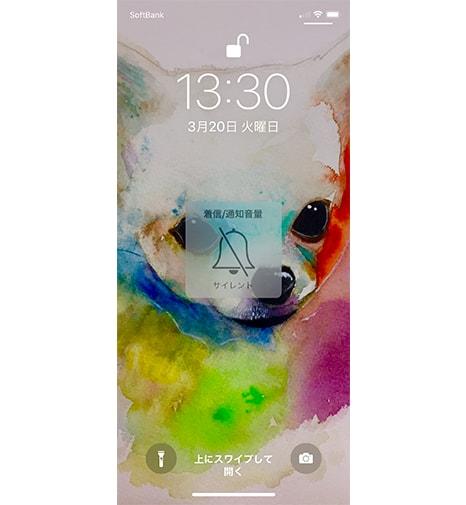 iphonex-silentmode02